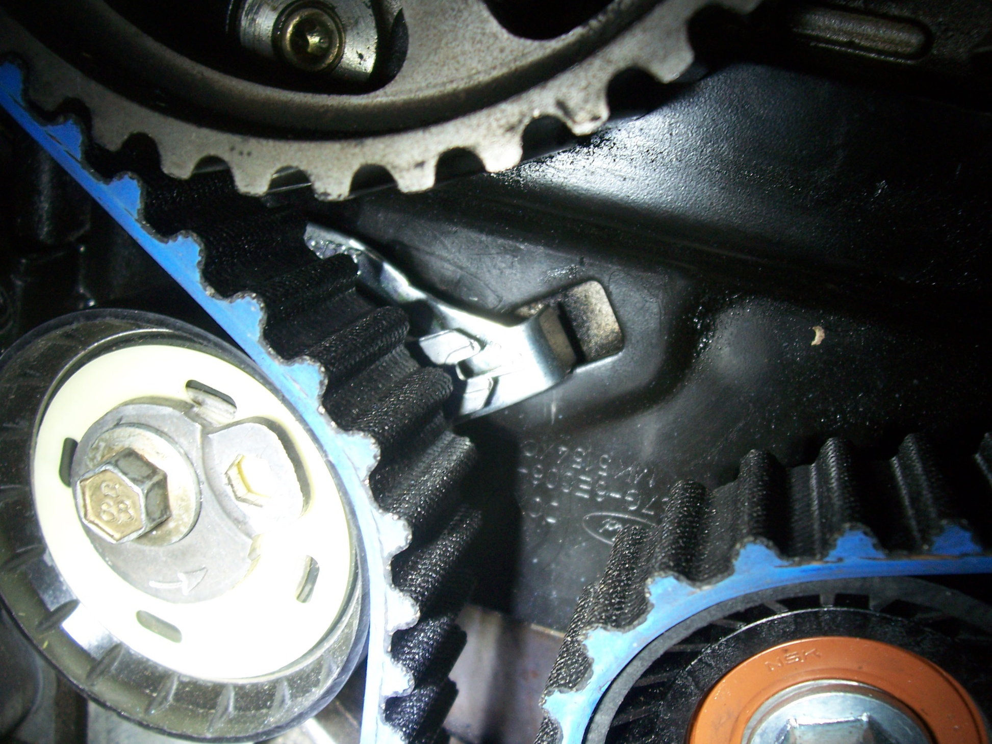 New Timing Belt Trouble Ford Focus Forum St 100 6191