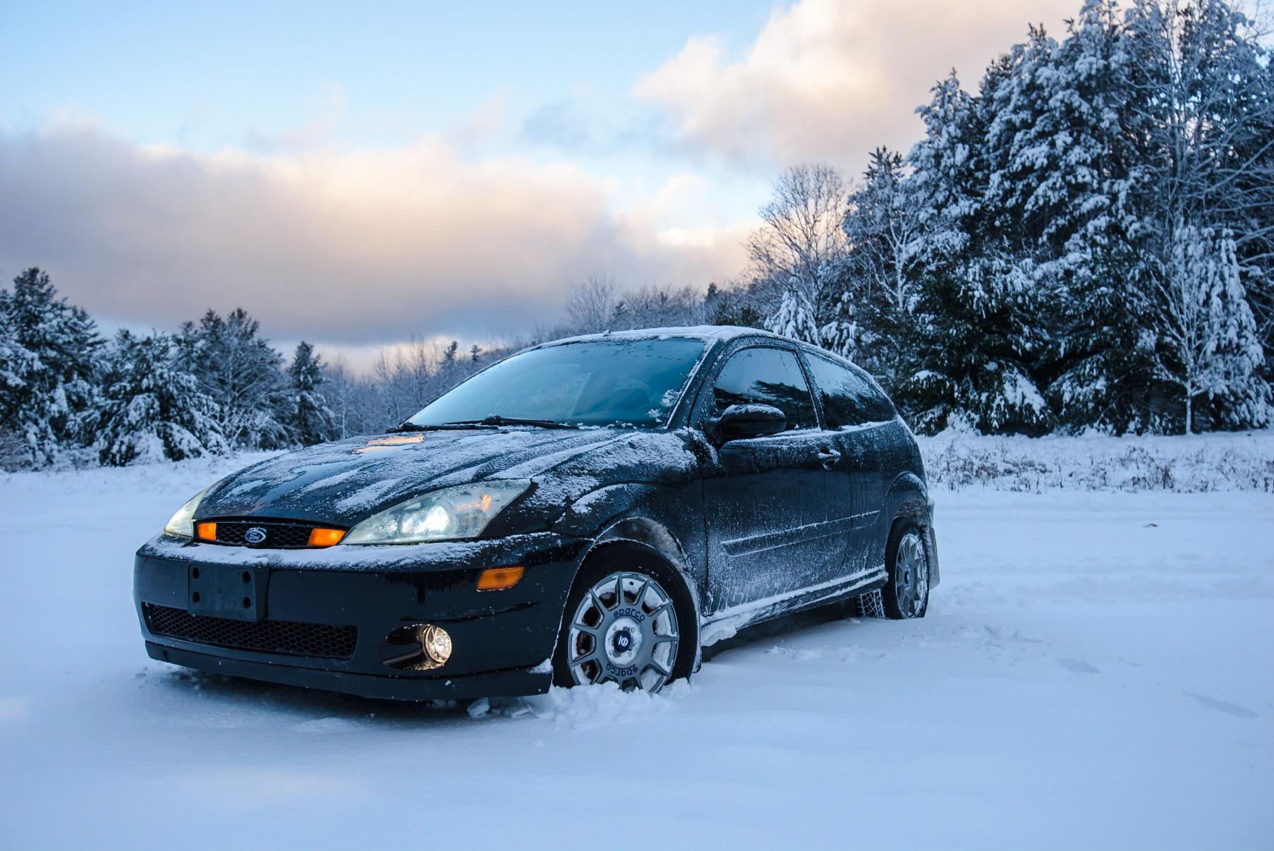 Rally Focus SVT Build-1901_m22_new_year2k19__077.jpg
