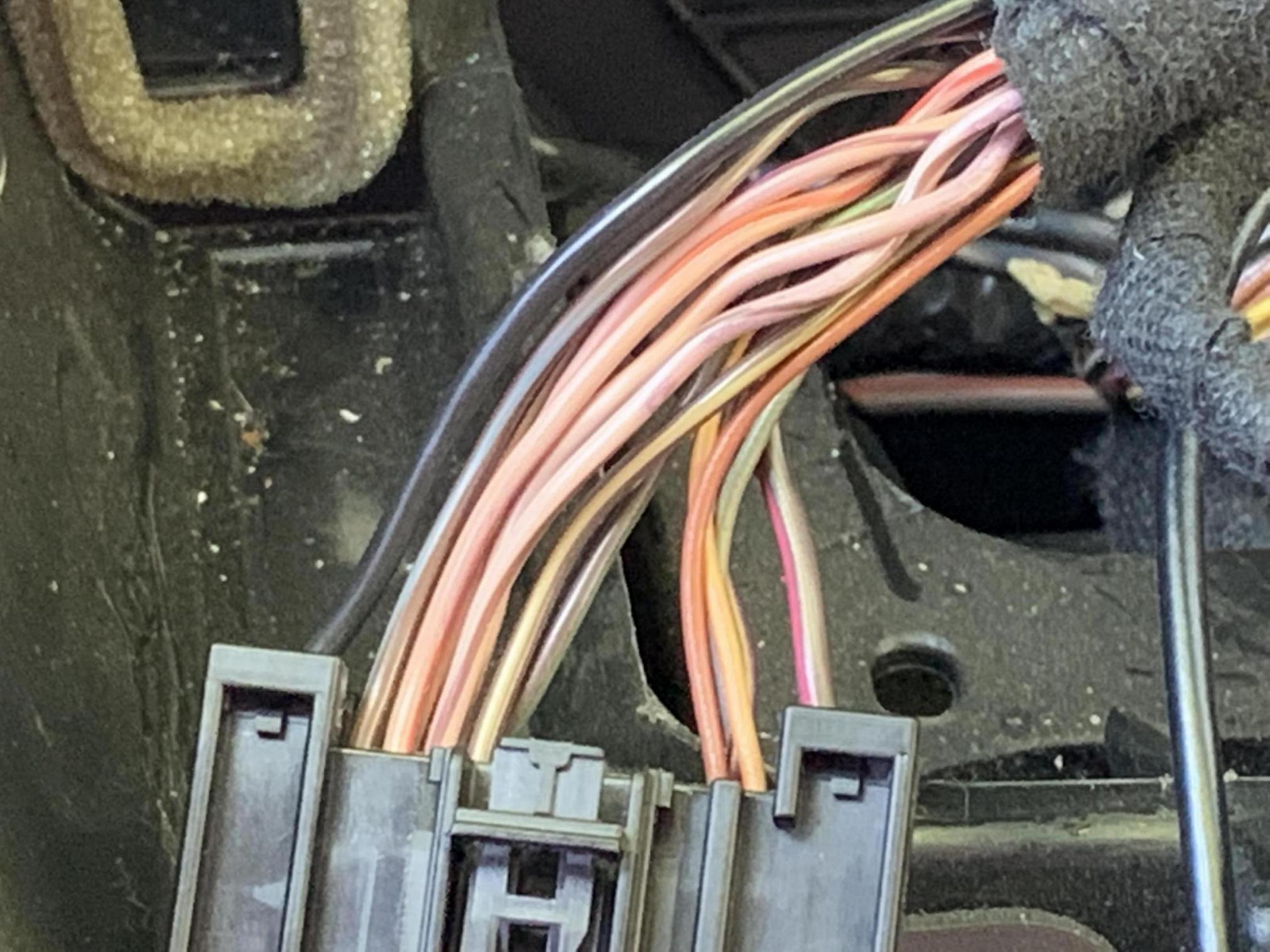 12 focus sel speaker wire-7220304c-eef1-43ee-824f-3bb22201f005_1562787740783.jpg