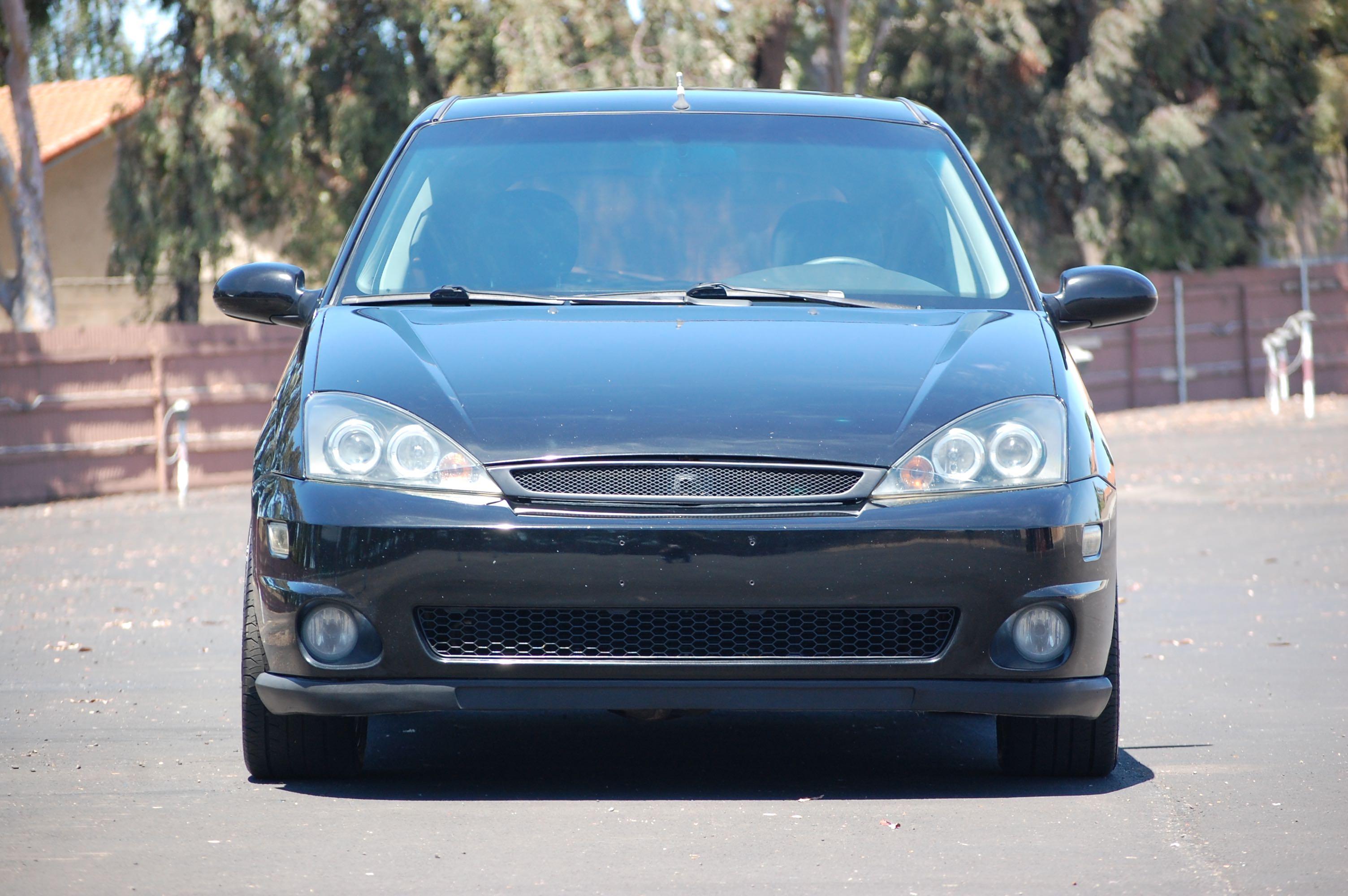 2003 SVTF, Ebony Black, Central CA.-dsc_0821-copy.jpg