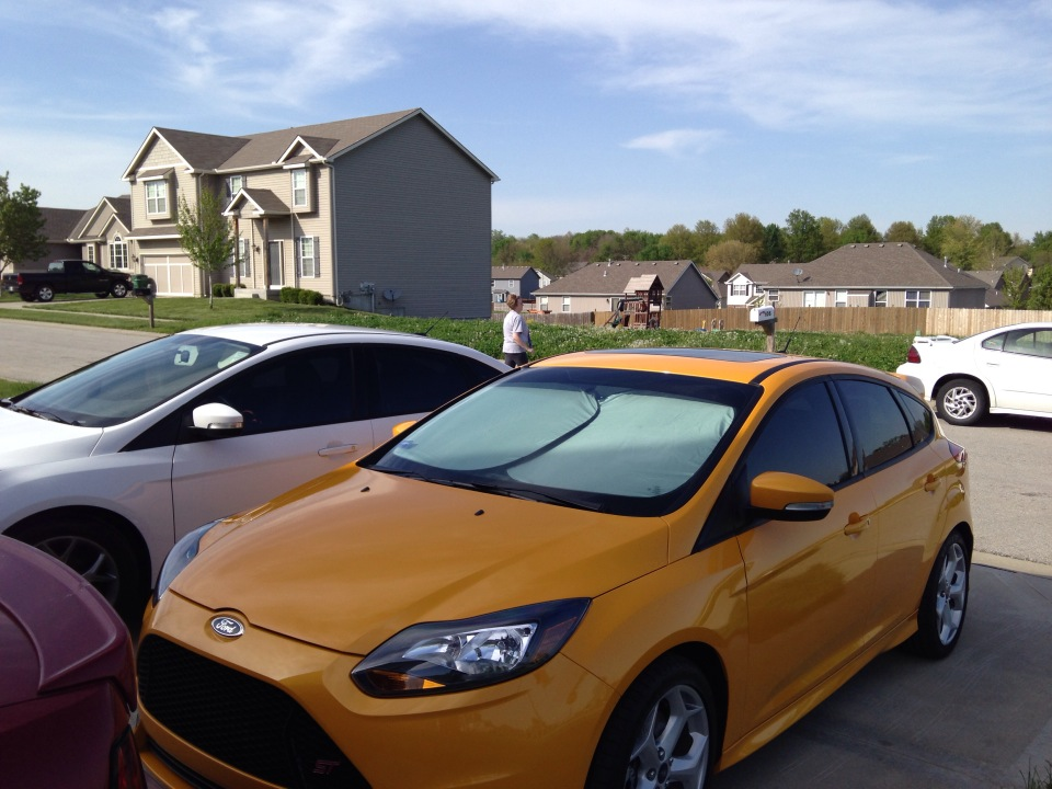 All tinted up-foci2.jpg