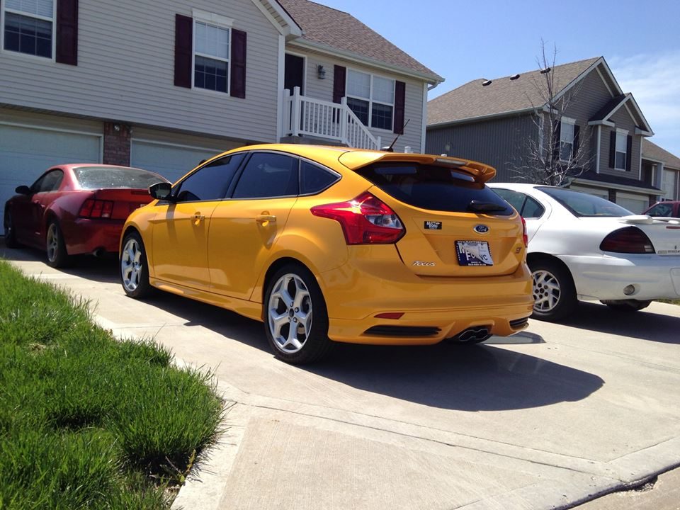 All tinted up-foci4.jpg