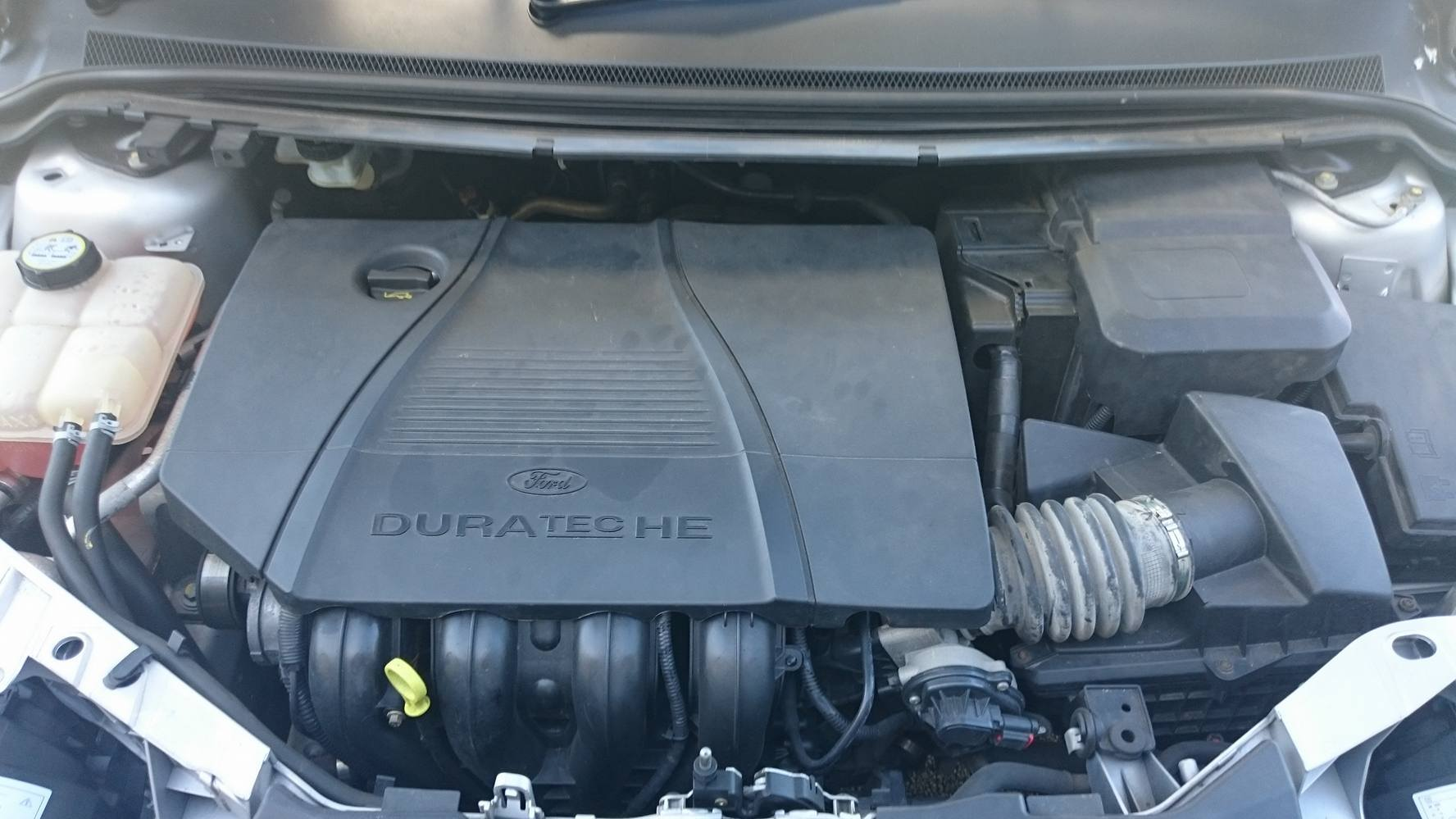 cold air intake placement-focus-bay.jpg