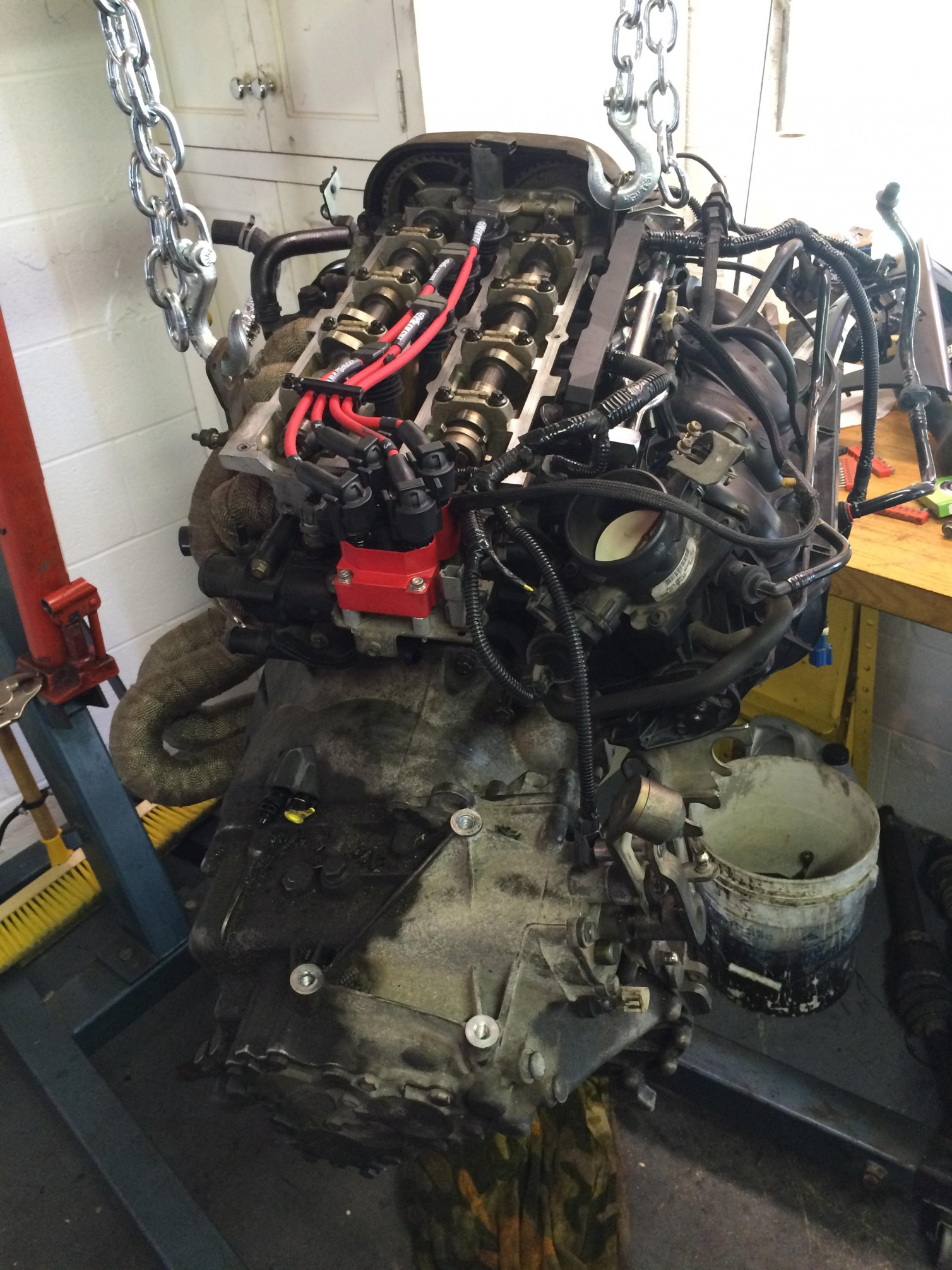 Svt rebuild and forced induction project-img_2518_1485951815234.jpg