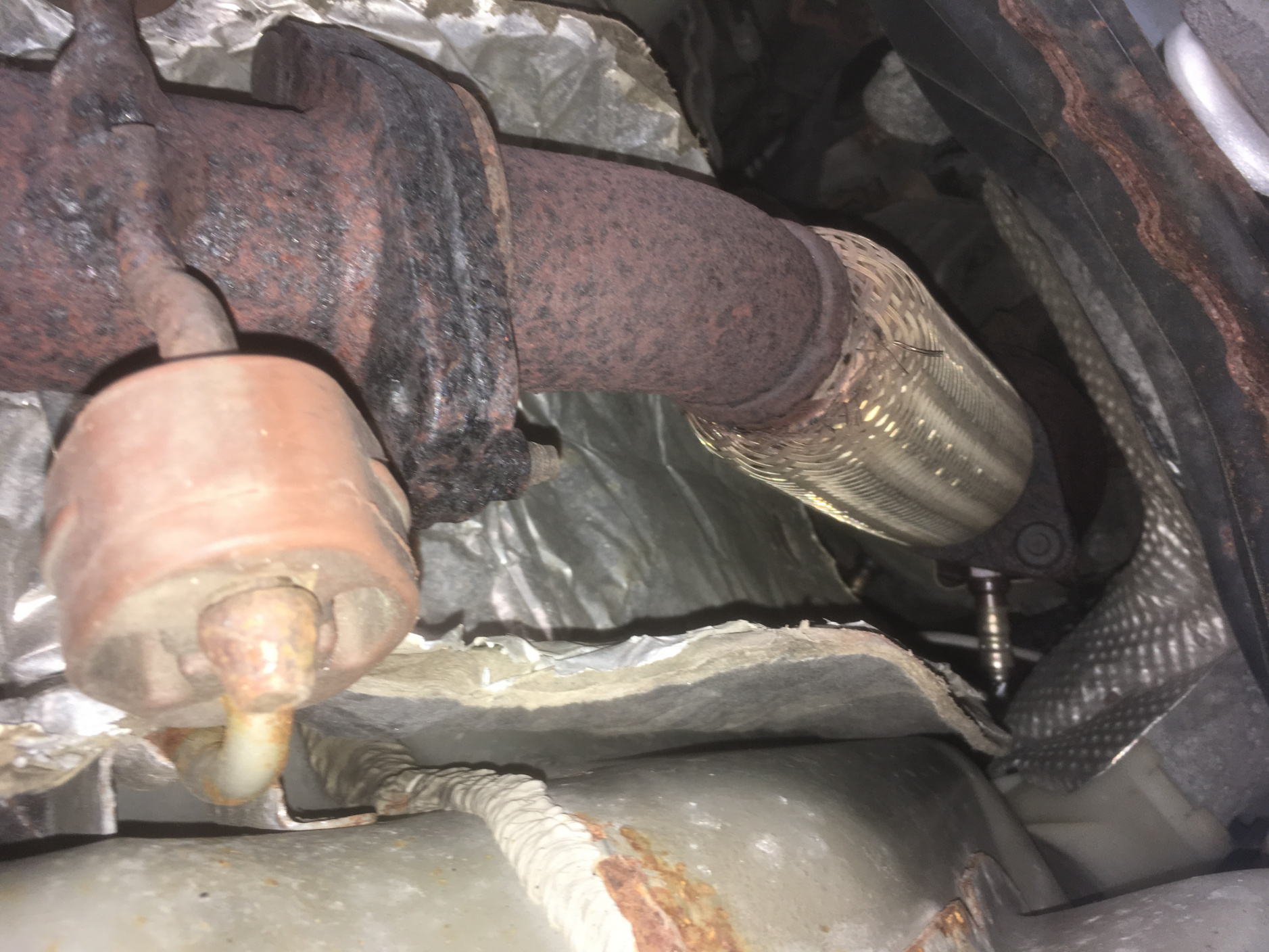 '06 SES 2.0l - Flex Pipe Replacement Confusion-img_2646.jpg