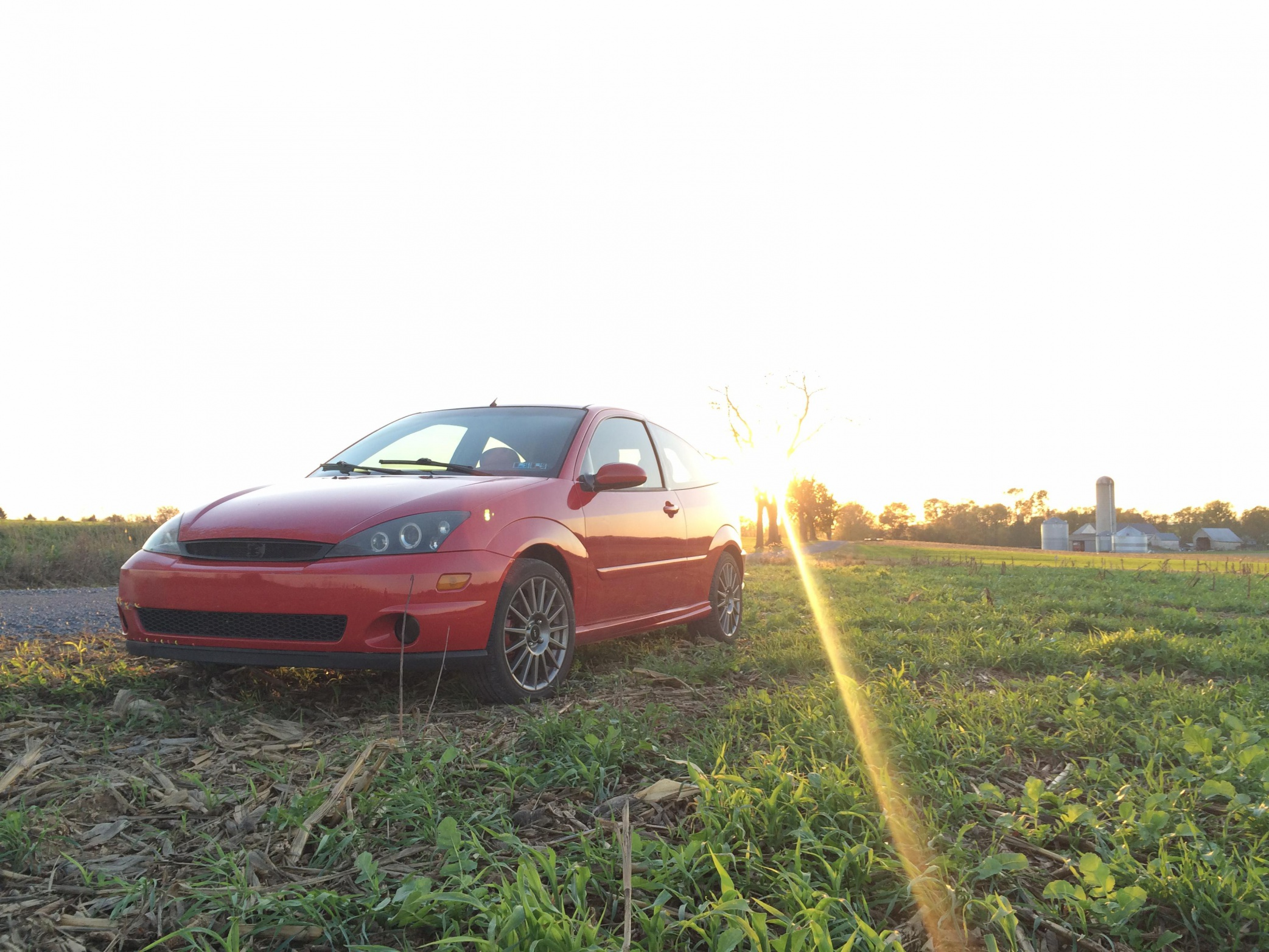 Svt rebuild and forced induction project-img_2675_1485952606950.jpg