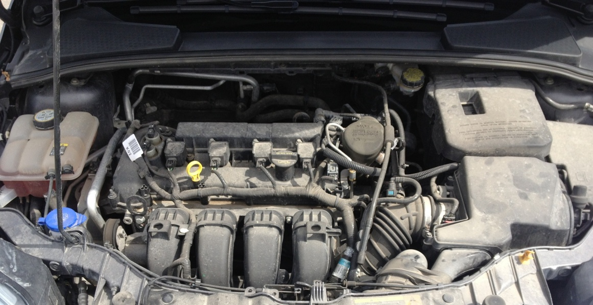 How to Clean the engine-img_3617.jpg