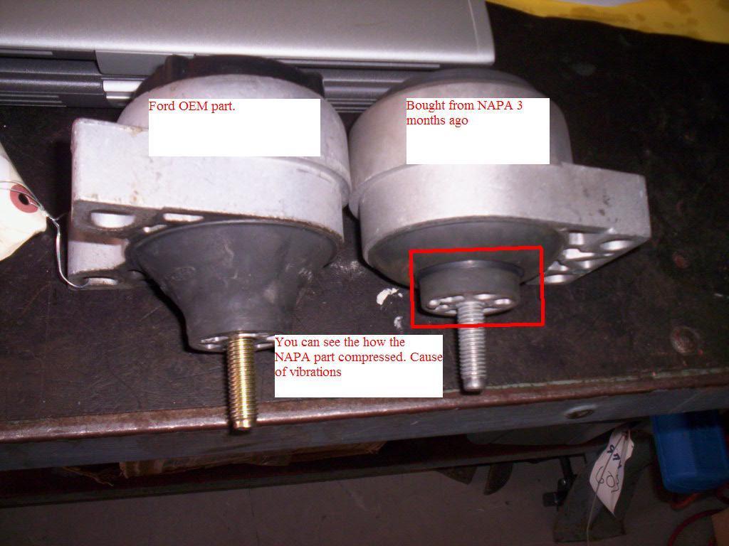 16988d1227405334 napa motor mount warning p side motor mount_a ford focus motor mount problems impremedia net