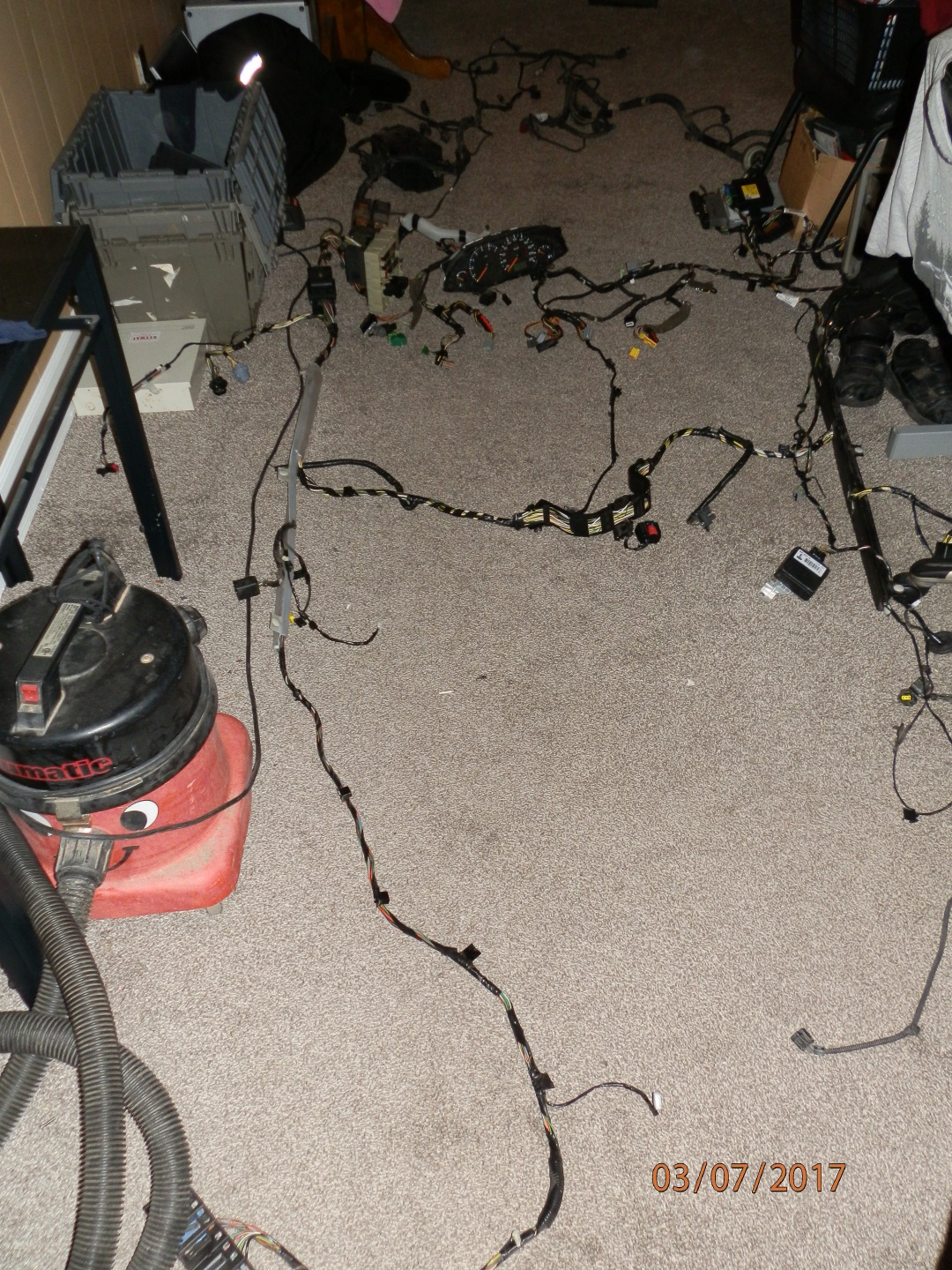 Wires chewed...need an id - Page 3 - Ford Focus Forum, Ford Focus ST ...