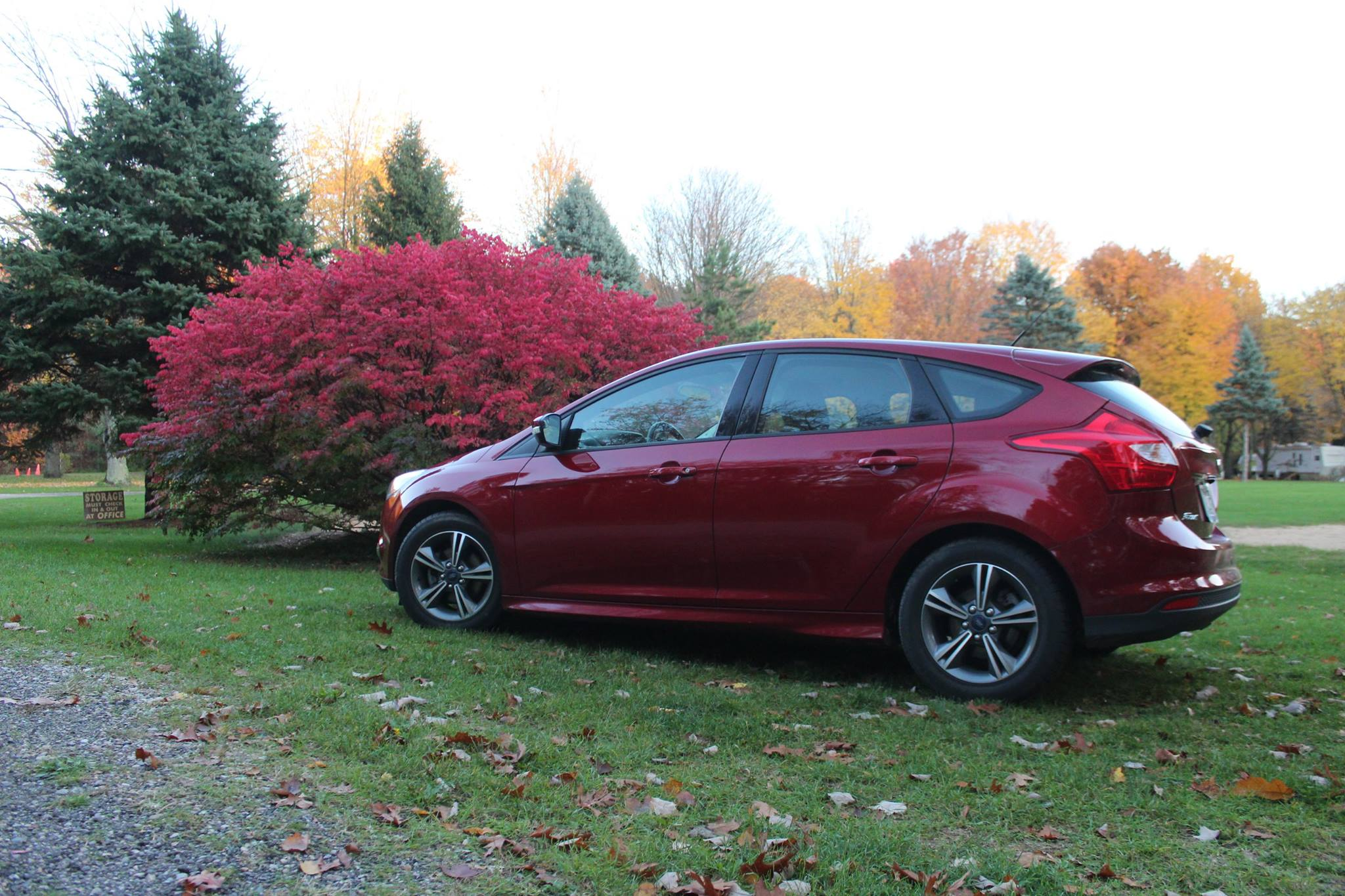 Post your MK3 Ford Focus (2012-Present) Pics!-peggy9.jpg