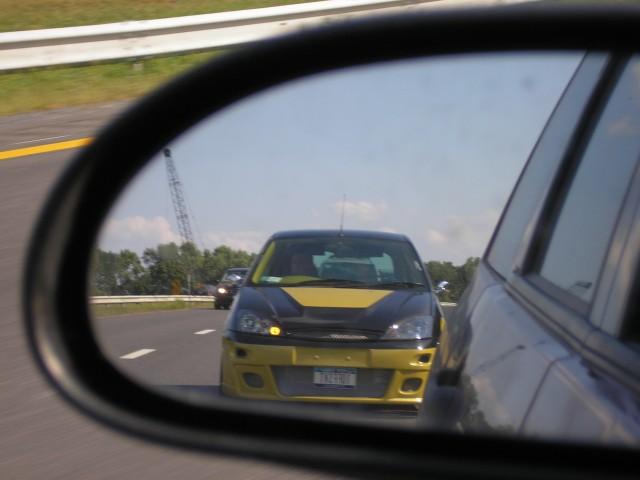 my svt focus-sideviewroach.jpg