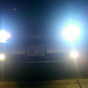 hids on