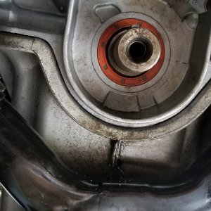My leaky oil seal