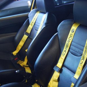 New Racing Harnesses Installed